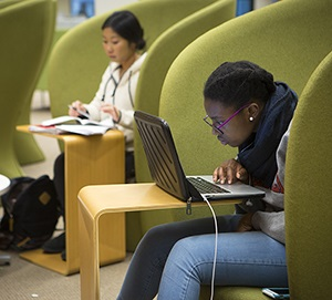 Students studying at Mann